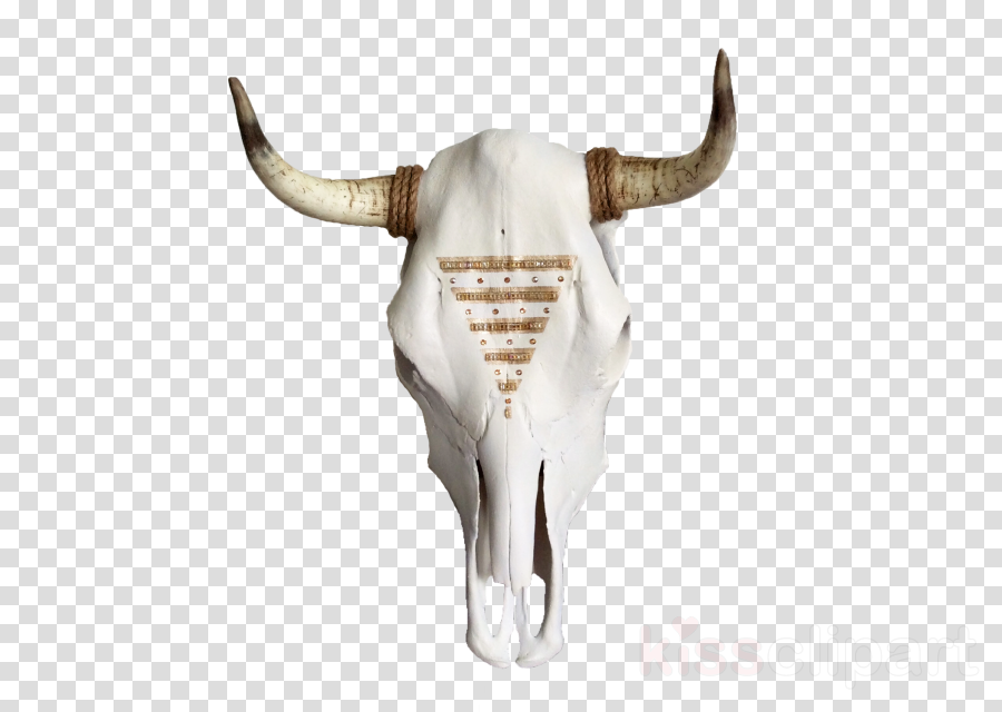 Champagne clipart Texas Longhorn Champagne Skull