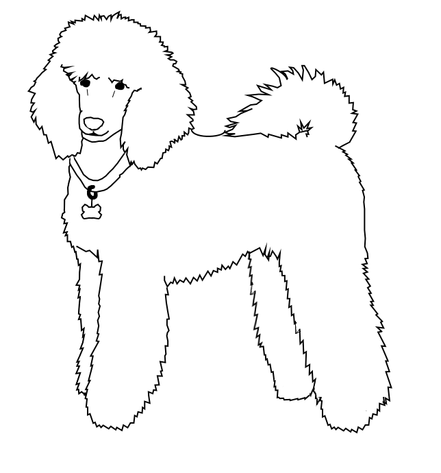 poodle line drawing clipart Toy Poodle Drawing