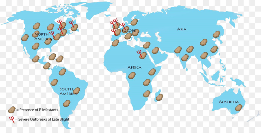 Download world map no background clipart world map united states of world map no background clipart world map united states of america gumiabroncs Image collections