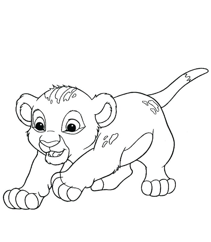 Download leon cachorro para colorear clipart Simba Lion Nala | Lion ...