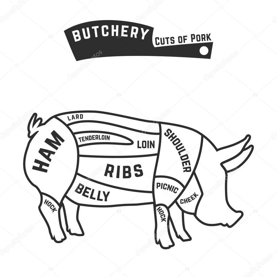 Download Cut Of Deer Meat Names Clipart Venison Cuts Diagram
