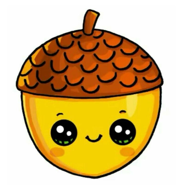 Drawing Sketch Food Fruit Pumpkin Graphics Png Clipart Free