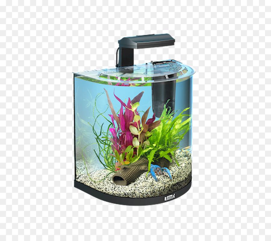 krebse nano aquarium clipart Nano aquarium Tetra