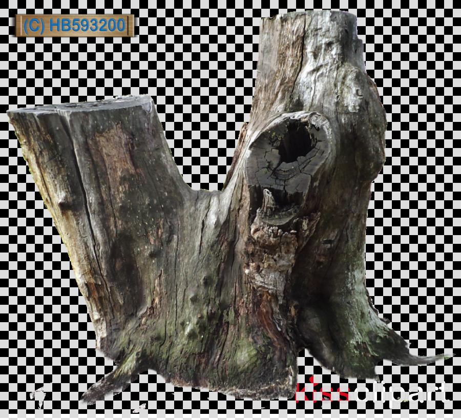 Tree stump clipart Trunk Tree stump