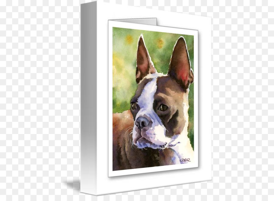 Boston Terrier clipart Boston Terrier Dog breed Dobermann