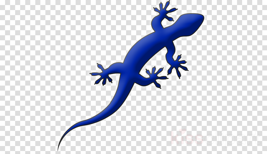 blue gecko png clipart Gecko Websites Lizard