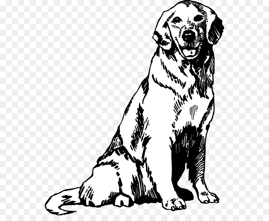 Book Black And White Clipart Puppy Drawing Dog Transparent Clip Art