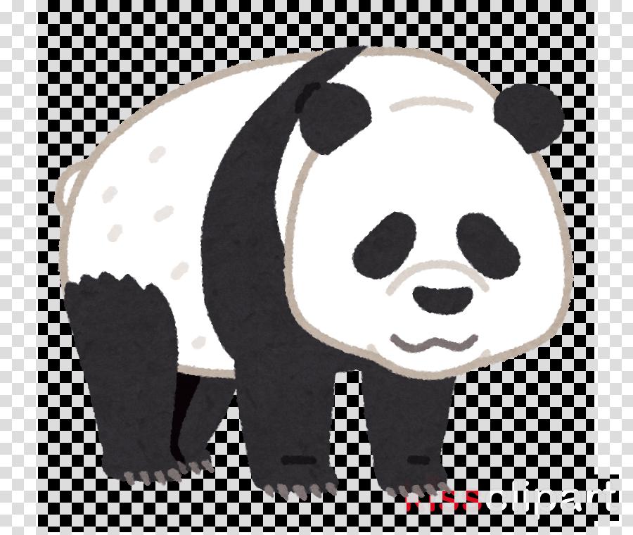 Giant panda clipart Giant panda Ueno Zoo Xiang Xiang