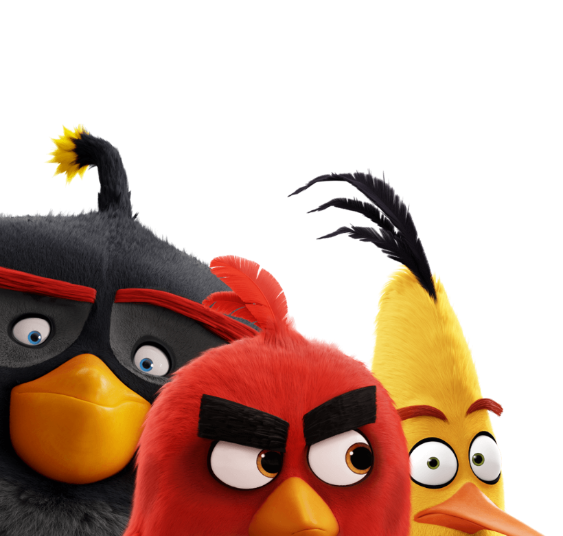 Злые птички герои