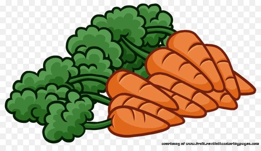Carrot Cartoon Drawing Transparent Png Image Clipart Free Download