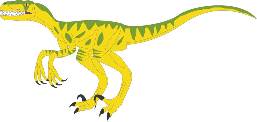 dinosaurs by ninjakingofhearts clipart Velociraptor Tyrannosaurus Protoceratops