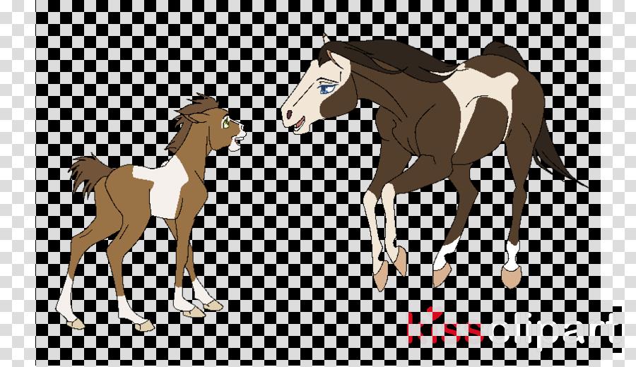 Foal clipart Mustang Foal Mare