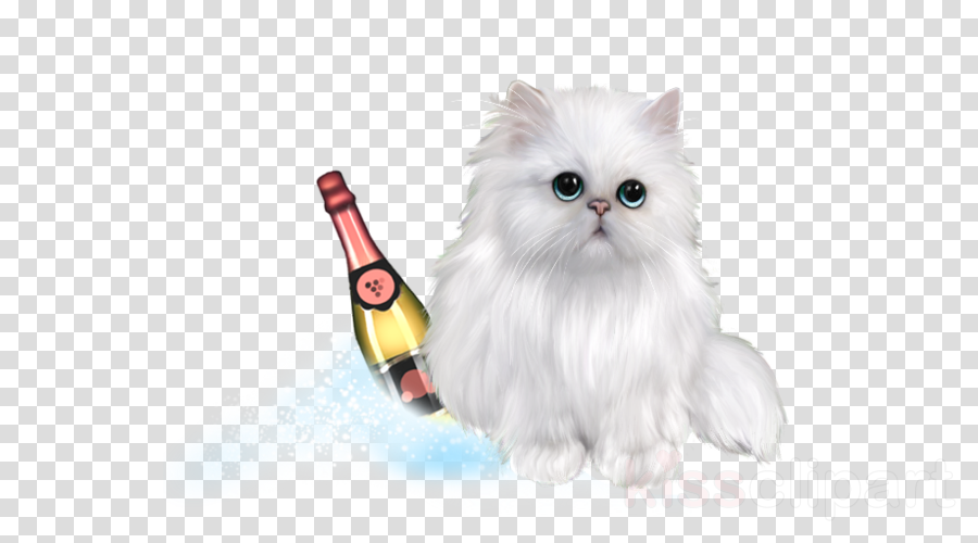 Persian cat clipart Persian cat Kitten Whiskers