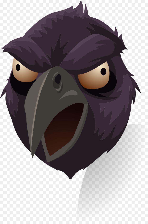 bird head transparent clipart Bird Common raven Rook