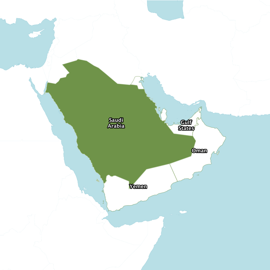 Download Saudi Arabia clipart Saudi Arabia World map | Map, World ...