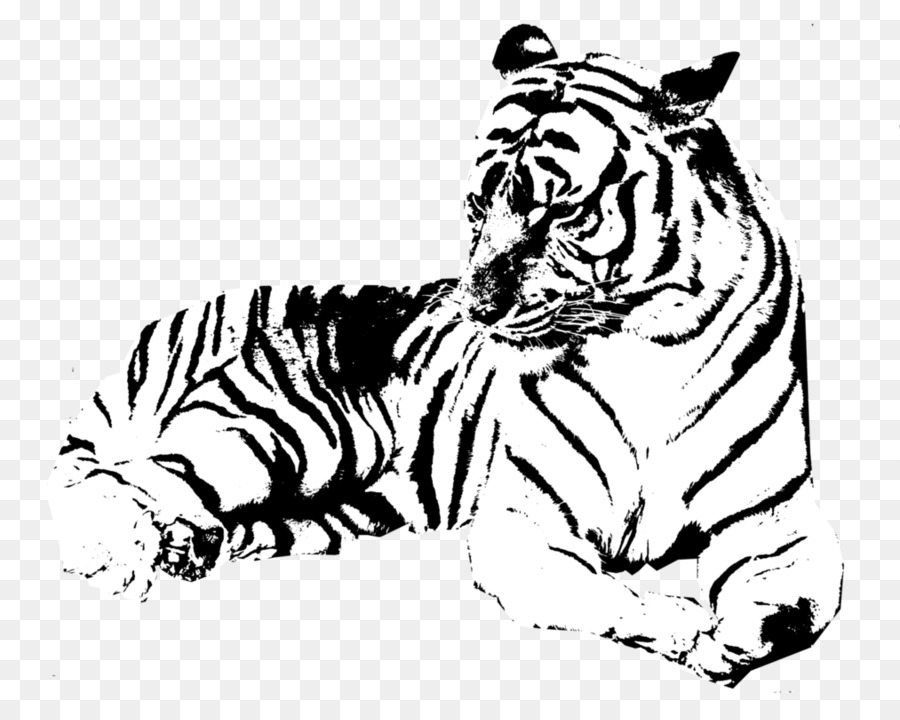 Tiger Drawing Lion Transparent Image Clipart Free Download