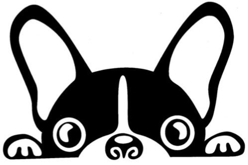 boston terrier clipart Boston Terrier French Bulldog