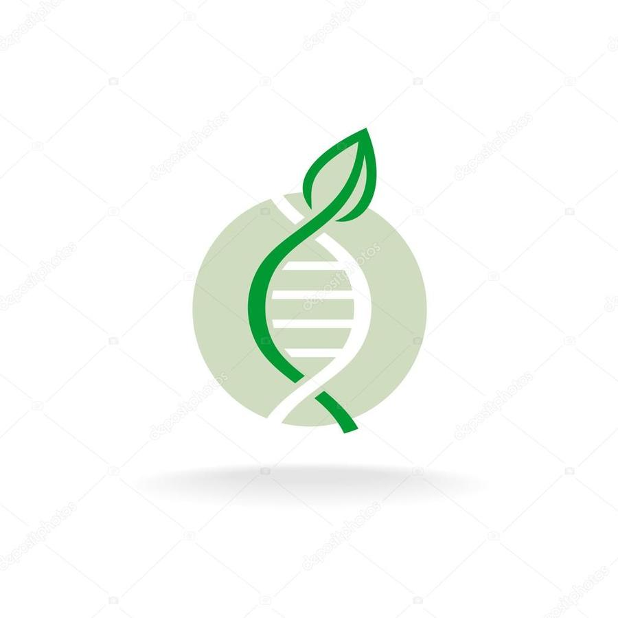 Genetics Dna Engineering Vector Illustration Green Text Leaf Genetic Diagram Clipart
