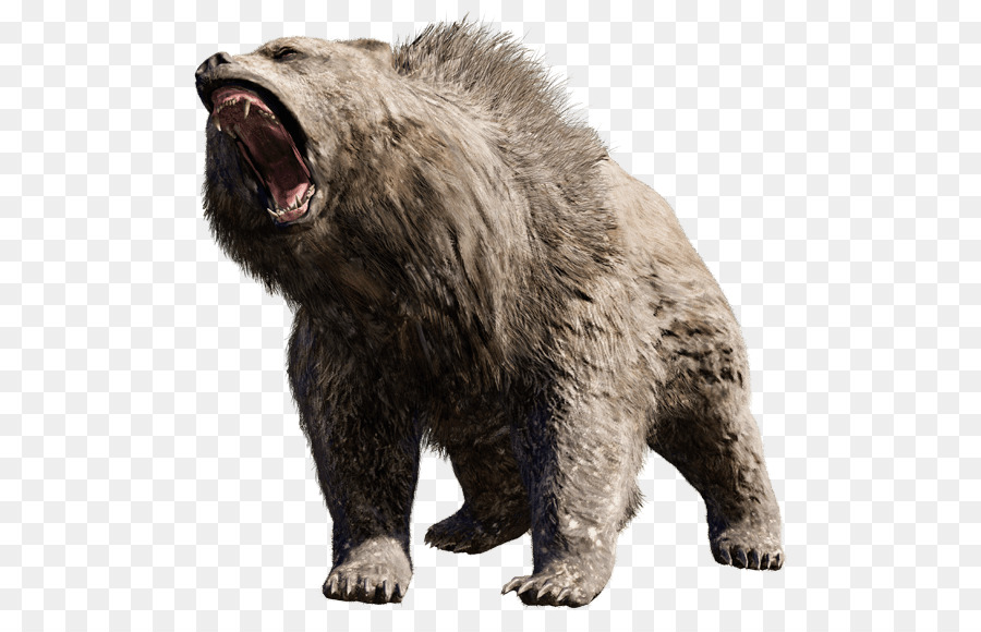 Bear Wildlife Transparent Png Image Clipart Free Download