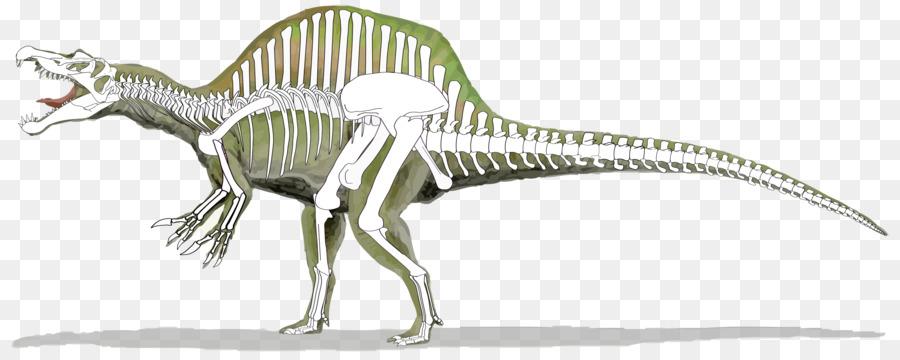 spinosaurus 2000 clipart Tyrannosaurus Baryonyx Suchomimus