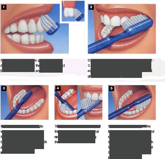 often should i floss clipart Tooth brushing Dental Floss Dentistry