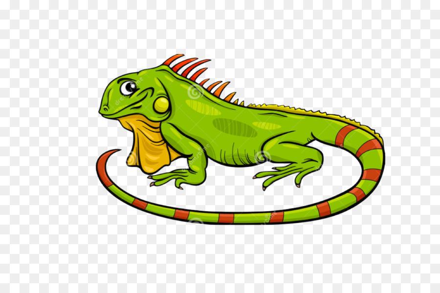 iguana cartoon clipart Green iguana Stock photography
