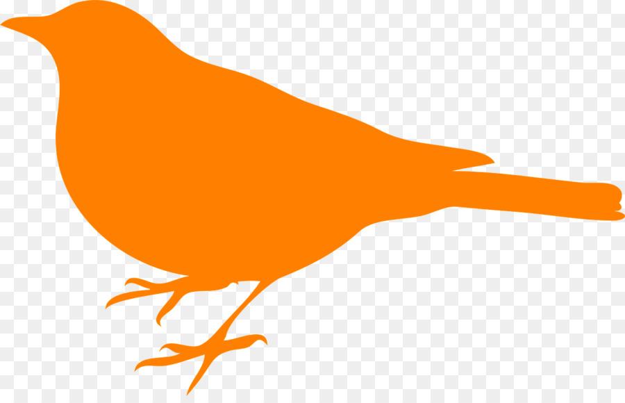 Bird orange. Line drawing clipart transparent