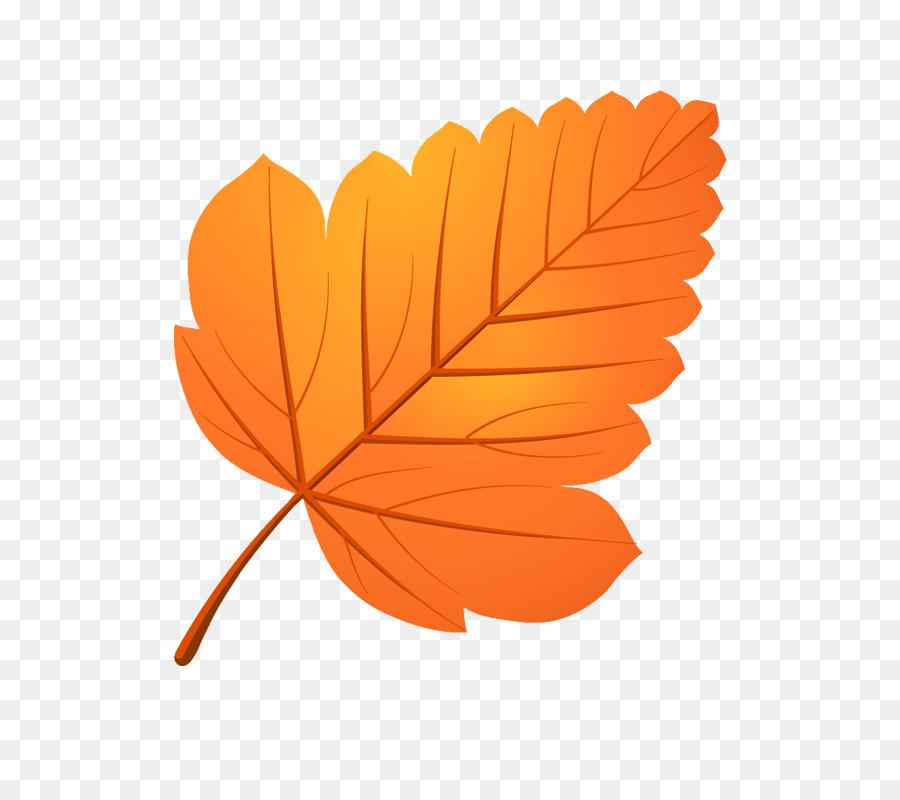 Autumn Leaf Drawing Clipart Autumn Cartoon Drawing Transparent Clip Art