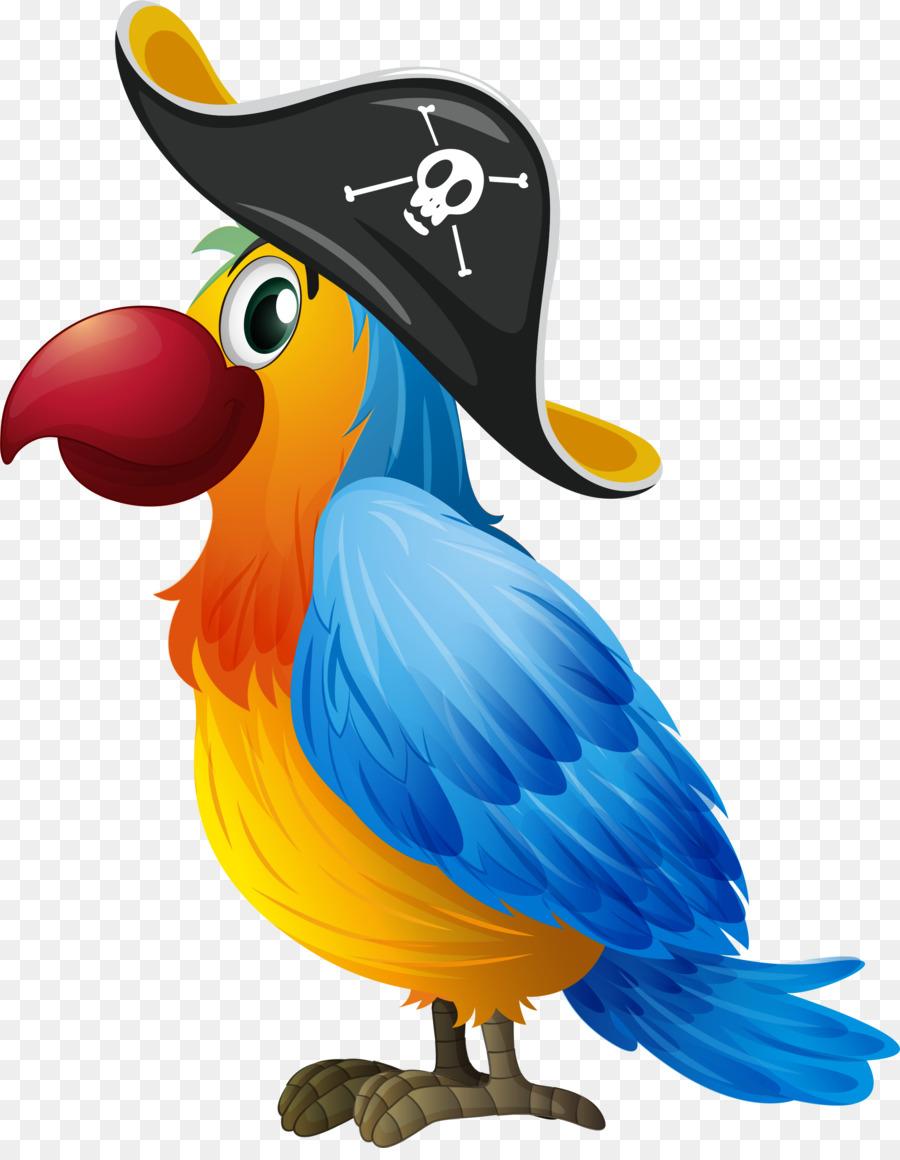 Bird Parrot