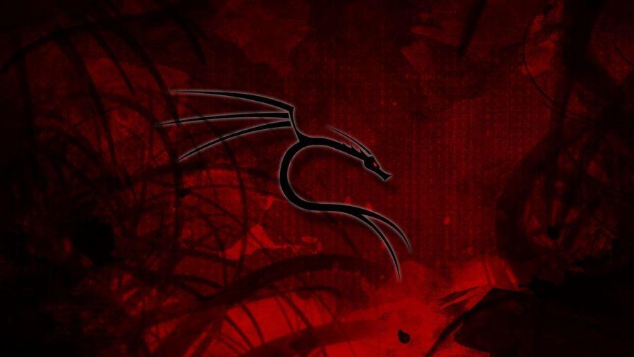 30+ 1080P Kali Linux Background Pics