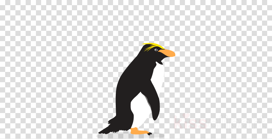 Penguin Bird Line Transparent Png Image Clipart Free Download