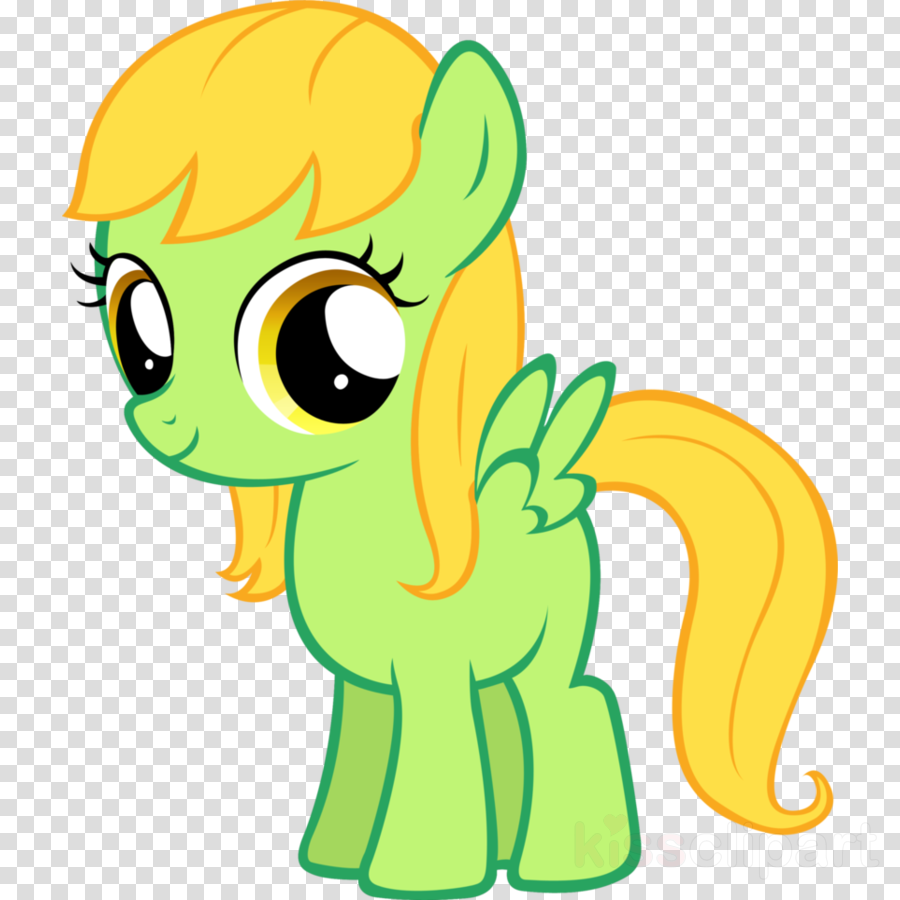 mlp soarin filly clipart Pony Rainbow Dash Foal