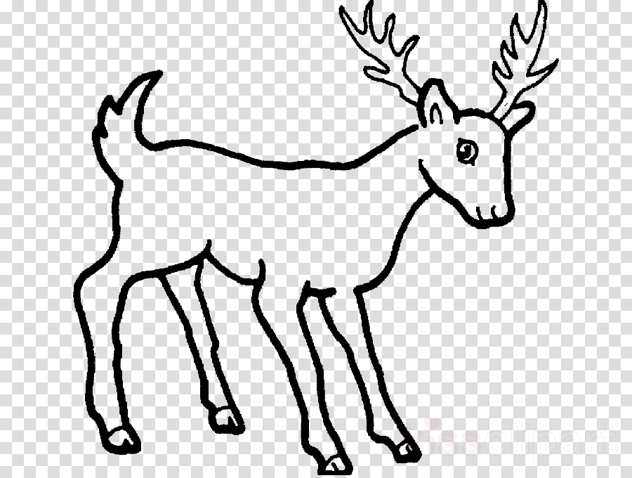 Deer Drawing Cartoon Transparent Png Image Clipart Free Download