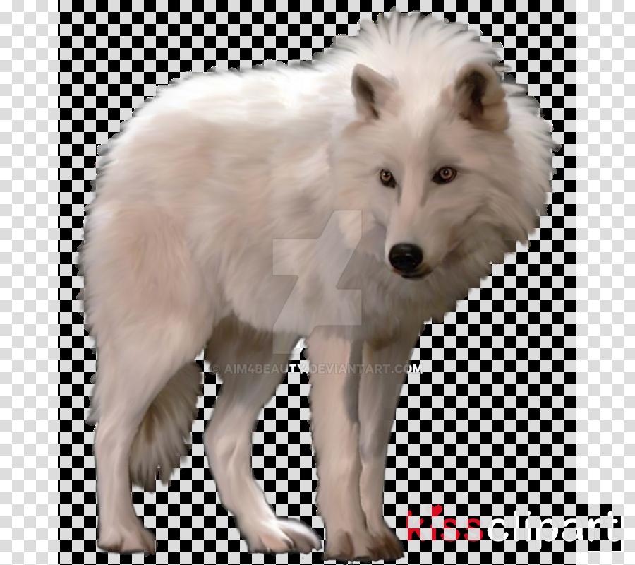 transparent arctic wolf clipart Arctic fox Dog