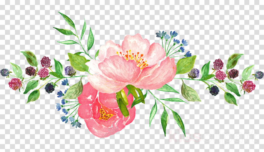 Flower Painting Illustration Transparent Png Image Clipart Free