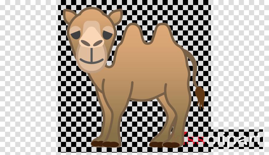 camel icon clipart Bactrian camel Dromedary Emoji