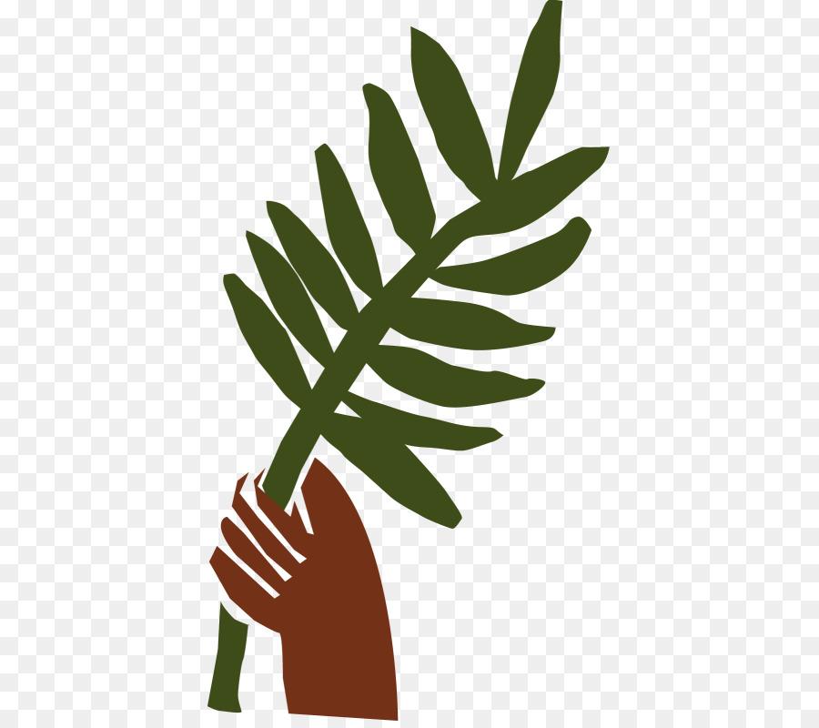 palm sunday clip art clipart Leaf Clip art