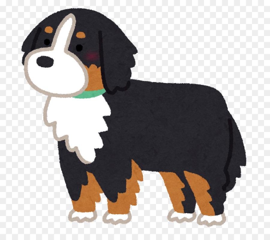 バーニーズ マウンテン ドッグ イラスト clipart Bernese Mountain Dog Dog breed Puppy