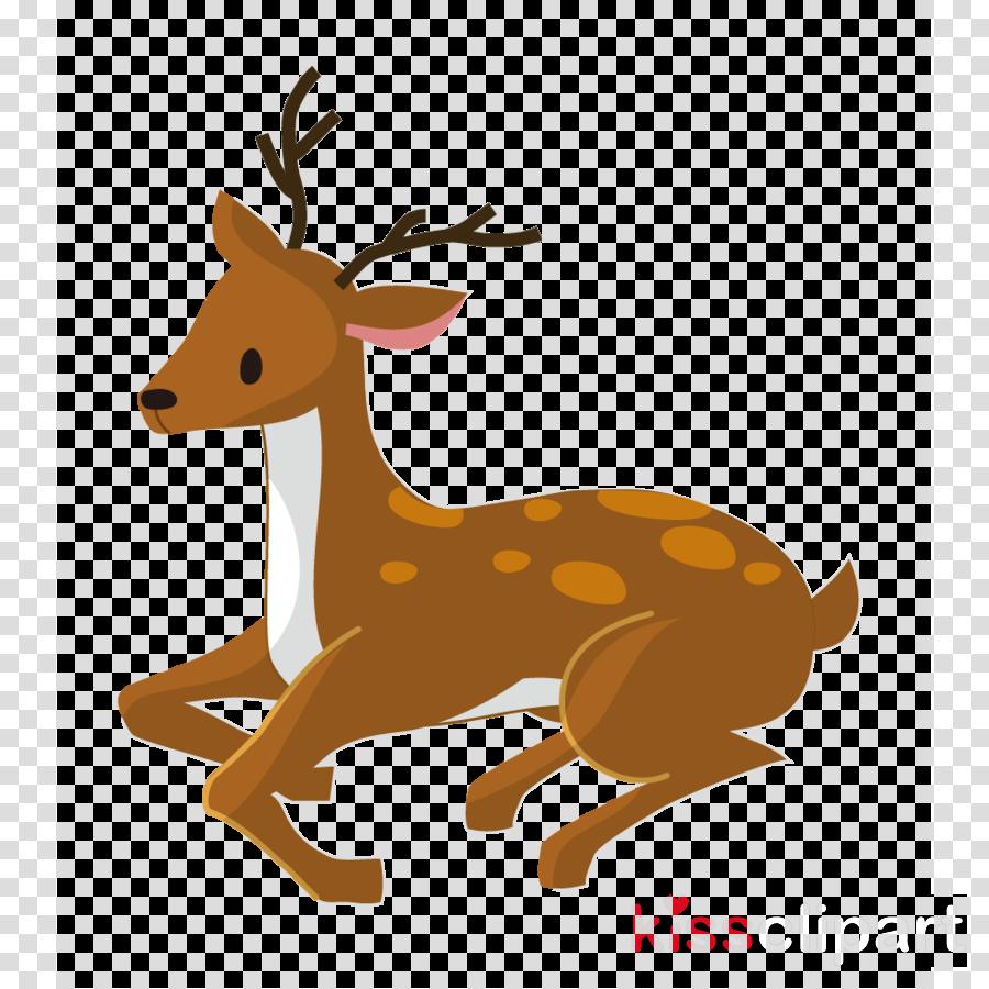 Reindeer clipart Reindeer Vertebrate