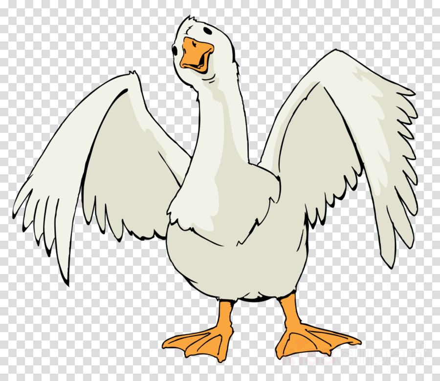 goose cartoon clipart Goose Duck Clip art