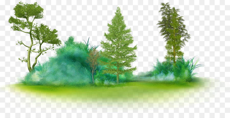 Pine Tree Green Transparent Png Image Clipart Free Download