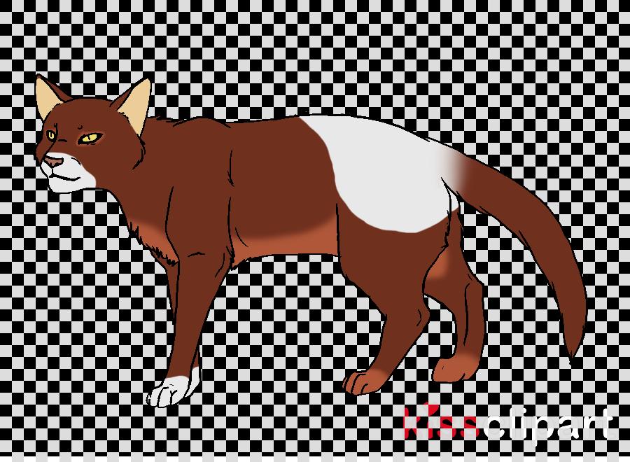 black cat with yellow eyes png clipart Havana Brown Kitten Bombay cat