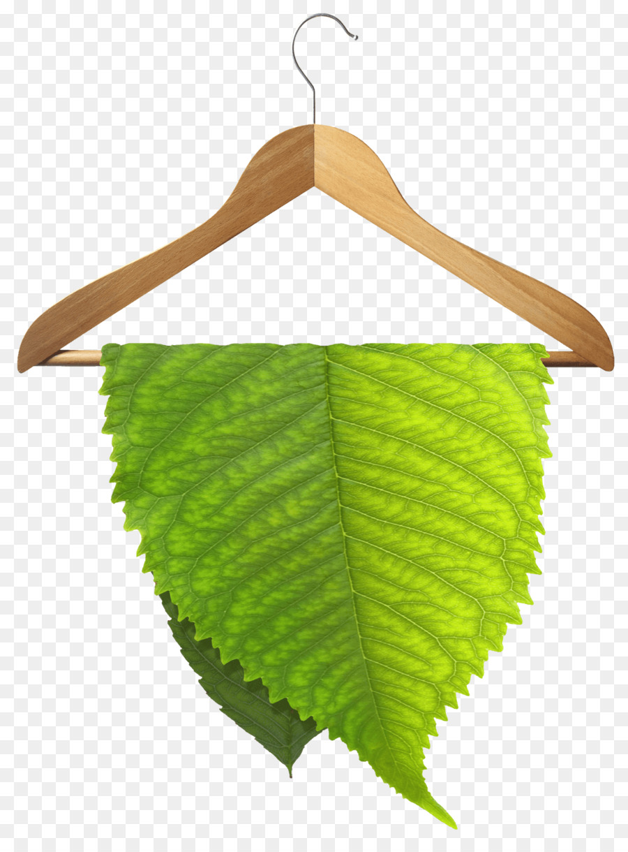 eco friendly dry cleaning clipart Dry cleaning Wet cleaning