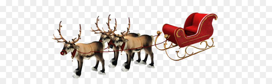 Deer Reindeer and Sledge, Sled for Santa Claus Christmas Day