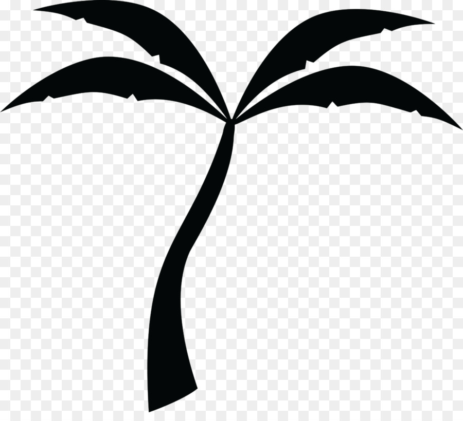 Palm Tree Background