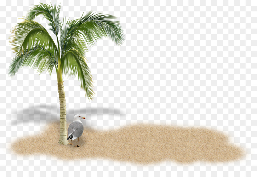 palm tree clipart Stock photography Palm trees