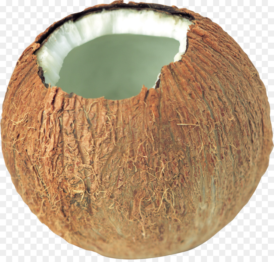 Coconut clipart Coconut oil King coconut