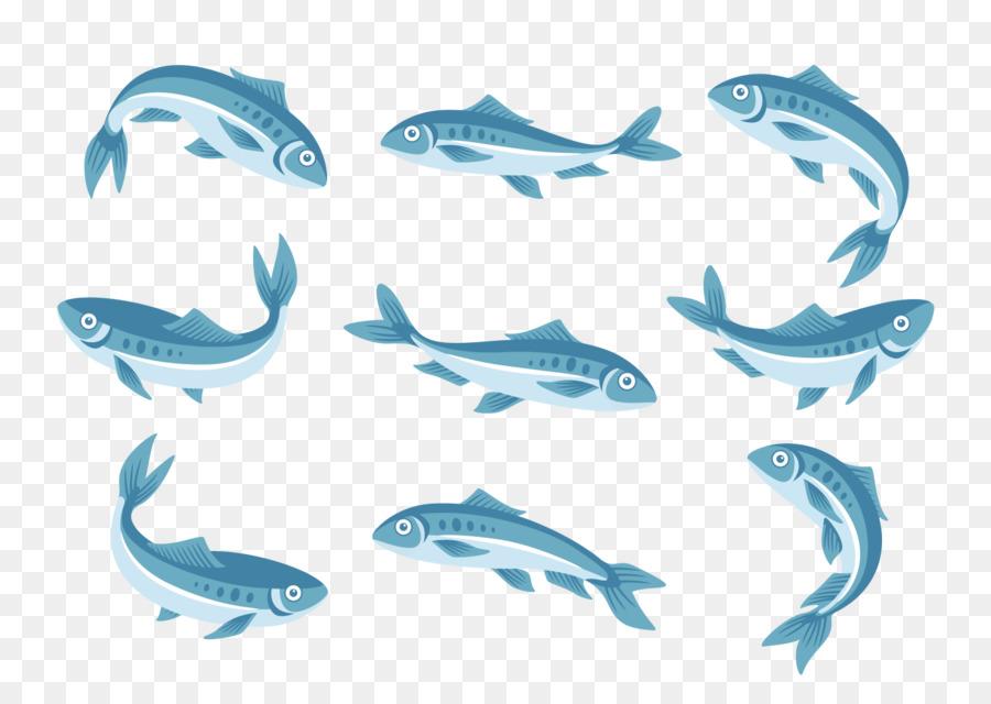 sardine vector png clipart Sardine Wine Dolphin