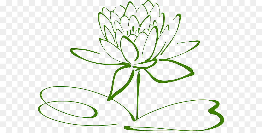 Drawing Flower Green Transparent Png Image Clipart Free Download