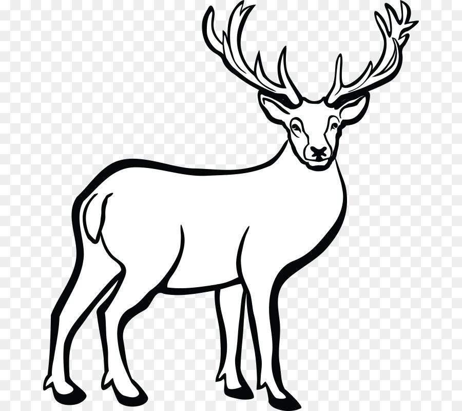 Deer Reindeer Wildlife Transparent Image Clipart Free Download